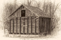 rustic, small,  abandoned barn in woods