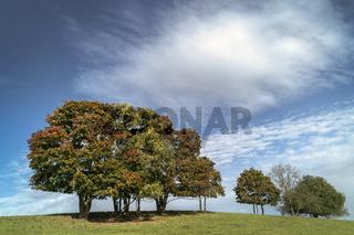 Herbst in Oberfranken