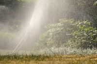 Rasensprenger als Impulsregner mit Wasser im Gegenlicht