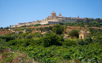 View of Mdina's St. Paul's Cathedral from the countryside below, Malta