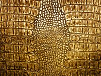 Golden crocodile leather closeup background.