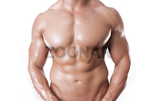 body builder body builder