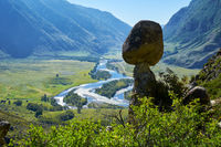 Nature phenomenon and nature miracle Stone Mushrooms rocks in Altai mountains and river Chulyshman