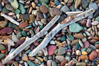 Driftwood on a beach of colorful pebbles and stones