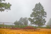 Rural landscape tight fog