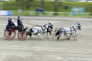 Jubiläumsveranstaltung der Ländlichen Reiter in Stadl Paura, Oberösterreich, Österreich