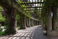 Breslau Pergola - Wroclaw Peergola in the park