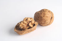 Open walnut