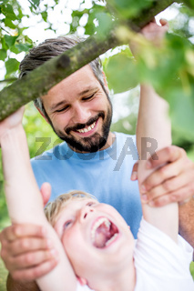 Junge klettert in einem Baum