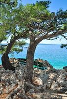 idyylic Place at Promenade of Brela,adriatic Sea,Makarska Riviera,Dalmatia region,Croatia