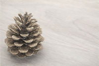 pine cone on grained wood