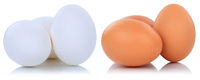 Braune und weisse weiße Eier frisch Freisteller freigestellt isoliert