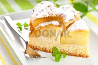 frisch gebackener Kuchen mit Apfel / fresh baked cake with apple