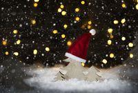 Christmas Tree, Snow, Lights, Snowflakes, Santa Hat
