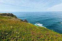 Summer Atlantic ocean coast (Algarve, Portugal).