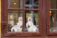 Two Porcelain dogs in the window