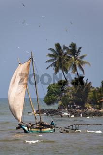 Segelboot - Negombo, Sri Lanka