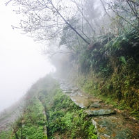 footpath on hill slope in rainy misty spring day