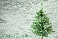 Fir Tree, Crumpled Paper Background, Text Merry Christmas