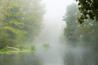 The Erft, a tributary of the Rhine, in the morning mist.