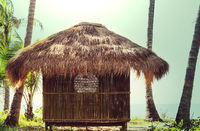 Tropical hut