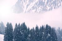 Berglandschaft im Winter mit Schneefall