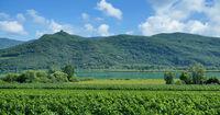 I--Südtirol--Kalterer See.jpg