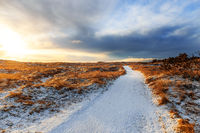Winter sunrise near Hvide Sande