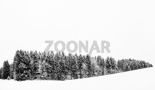Winterkontrast