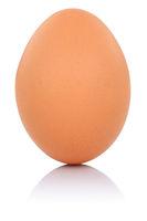 Braunes Ei Freisteller freigestellt isoliert
