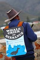 whalecrier in Hermanus, South Africa
