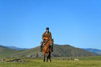 Reiter und Pferd in der Steppe