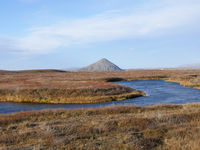 Autumn landscape with Vindbelgjarfjall volcano near lake Myvatn in Iceland