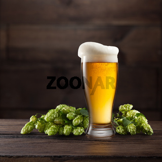 Still life with a glass of beer and hop.