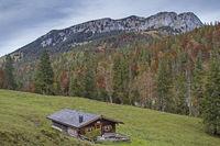 Upper Orterer Alm south of Benediktenwand