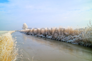 Winter am Wybelsumer Tief in Ostfriesland