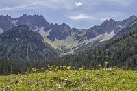Summer in Eppzirl Valley