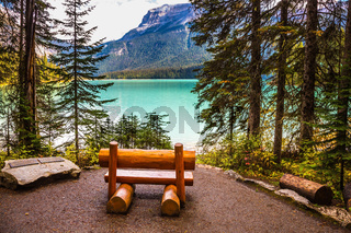 Wooden bench on the lake shore