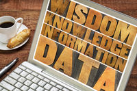 data, information, knowledge,  wisdom concept