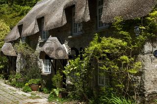 typisches Haus im Dartmoor