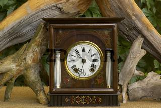 Alte Uhr mit Wurzeln