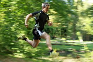 Springend im Wald