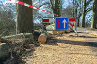 Traffic problems traffic sign storm damage fallen tree