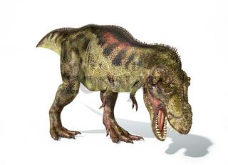 Tyrannosaurus Rex dinosaur, photorealistic representation. Dynamic view.