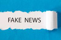 Phrase FAKE NEWS