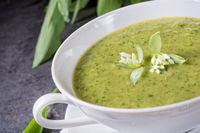 green wild garlic soup