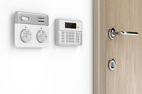 Thermostat and alarm controls