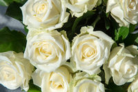 White roses at wedding