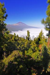 Vulkan Pico del Teide, Teide-Nationalpark, Parque Nacional de la