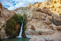 The national park and reserves Ein Gedi, Israel
